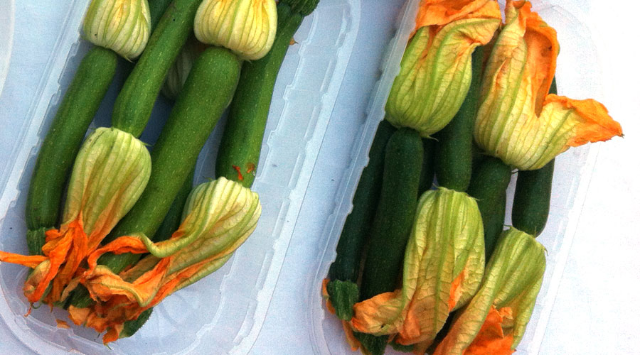 Beignets de fleurs de courgette la romaine cook is love - Beignet de fleur de courgette facile ...
